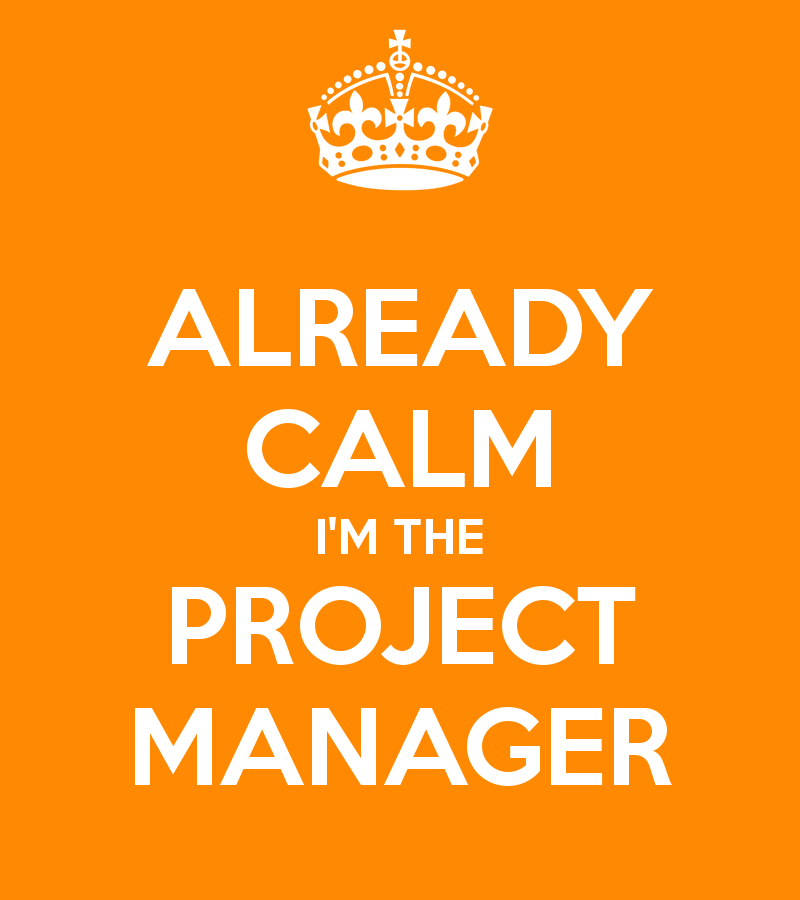 already-calm-i-m-the-project-manager-1