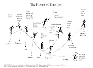 Process_of_transition