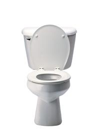 In Het Toilet.Projectsucces Vrijmibo Wat Te Doen Als Je Telefoon In